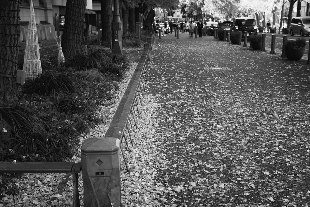 横浜風景2471