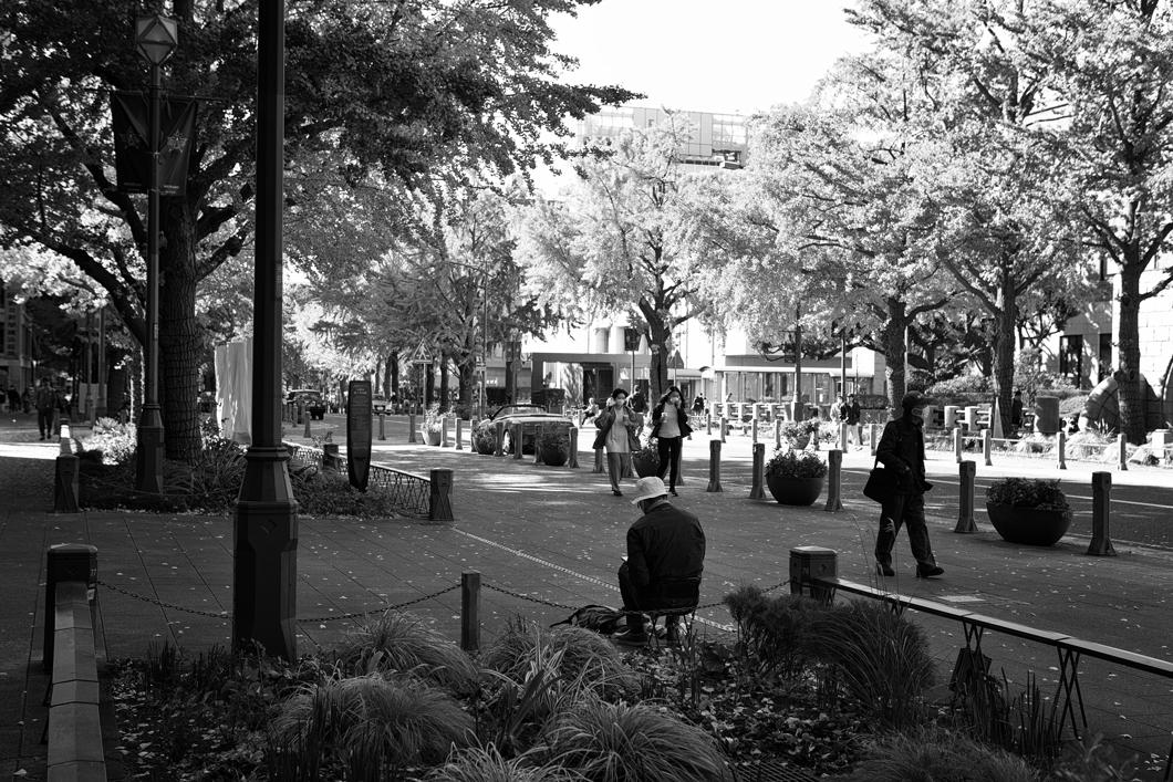 横浜風景2472
